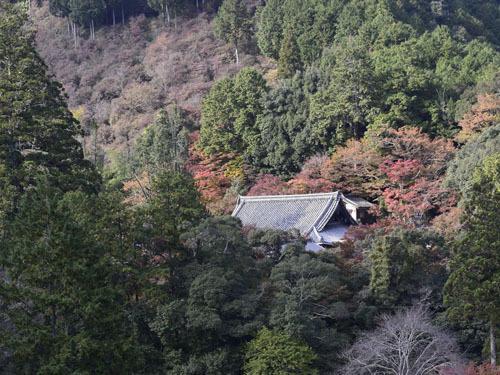 西明寺001.JPG