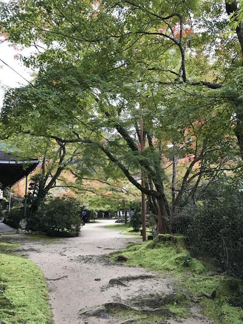 西明寺008.JPG
