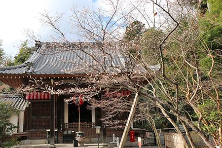 赤山禅院011.JPG